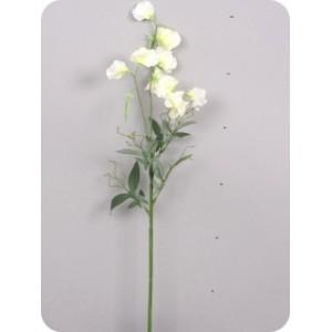 Душистый горошек, кремовый, ветка 70 см