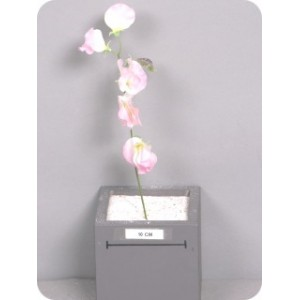 Душистый горошек, розовый, букет из 12 шт., 30 см