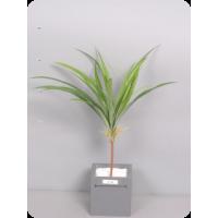 Агапантус, ветка листьев, зеленый, 48 см