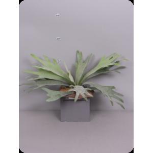 Аренда  искусственных растений Платицериум (Оленьи рога), зеленый, 27 см