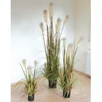 Пампасная трава в горшке, 80 см