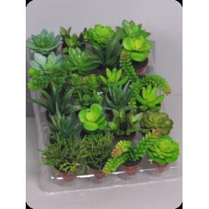 Аренда  искусственных растений Суккуленты, микс, на поддоне в горшках, 24 штуки