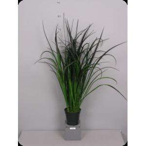 """Аренда  искусственных растений Трава """"Речная"""", малая, зелено/черная, в горшке, 80 см"""