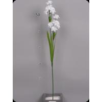 Нарцисс белый, 66 см