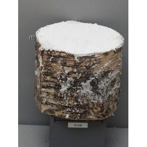 Брус дерева со снегом, высота 15 см, Ø18cm. Удобен для создания новогодних композиций.