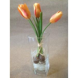 Миниатюрные тюльпаны с луковичками