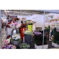 Выставка «Flowers-IPM-2013» стенд «Arta&Flowers»