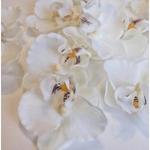 Упаковка из 12 шт. Головки фаленопсиса/орхидеи белые