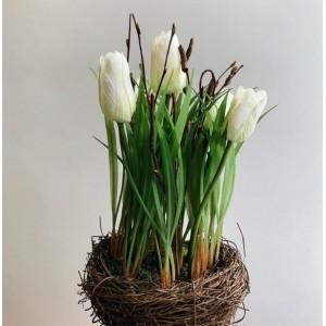 """Тюльпаны белые в """"гнезде"""", 26 см"""