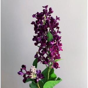Сирень Канны ветка фиолетовая , 83 см