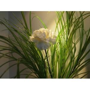 Аренда искусственных цветов и растений