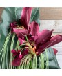 Цветок Taккa, фиолетовый, 80 см
