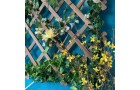 Зеленая стена из искусственных растений для лоджии