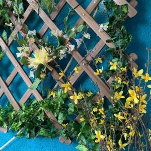 Панно на стену из декоративных растений на шпалере